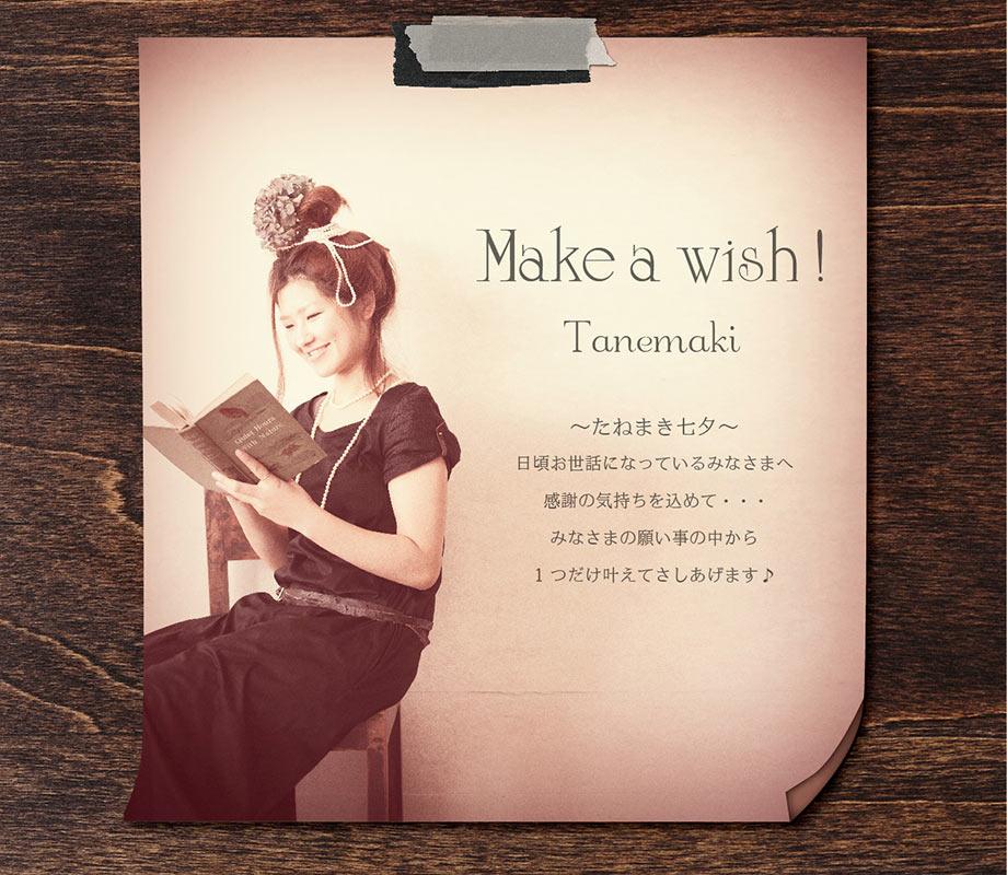 2011//make a wish