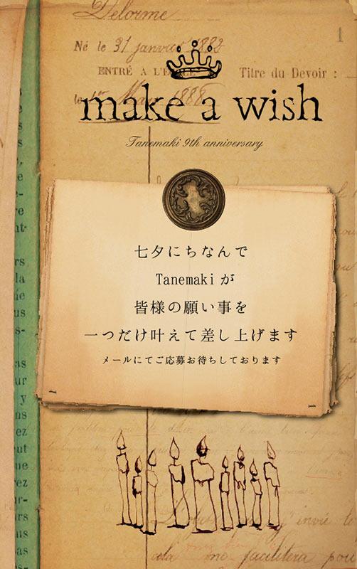 2014//make a wish