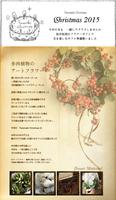 Tanemaki Christmas;クリスマスフワラーギフト