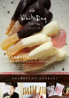 White Day gift;2019ホワイトデーギフト
