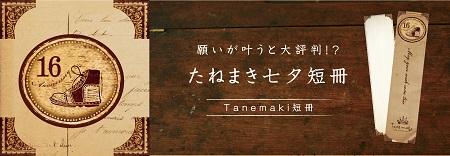 16th_Banner_2_07.jpg
