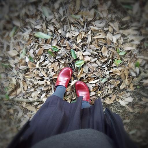 17-10-25-12-42-40-201_photo.jpg