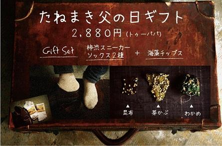2013FD_poster_net.jpg