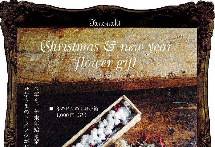 たねまきクリスマス1