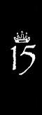 ナンバー15