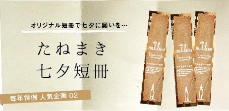 たねまき七夕短冊