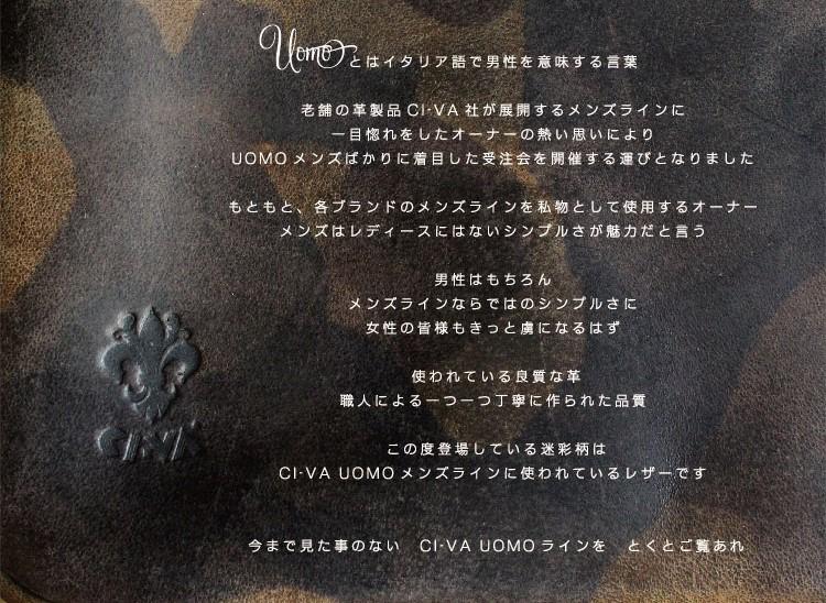 2016_CIVA.jpg