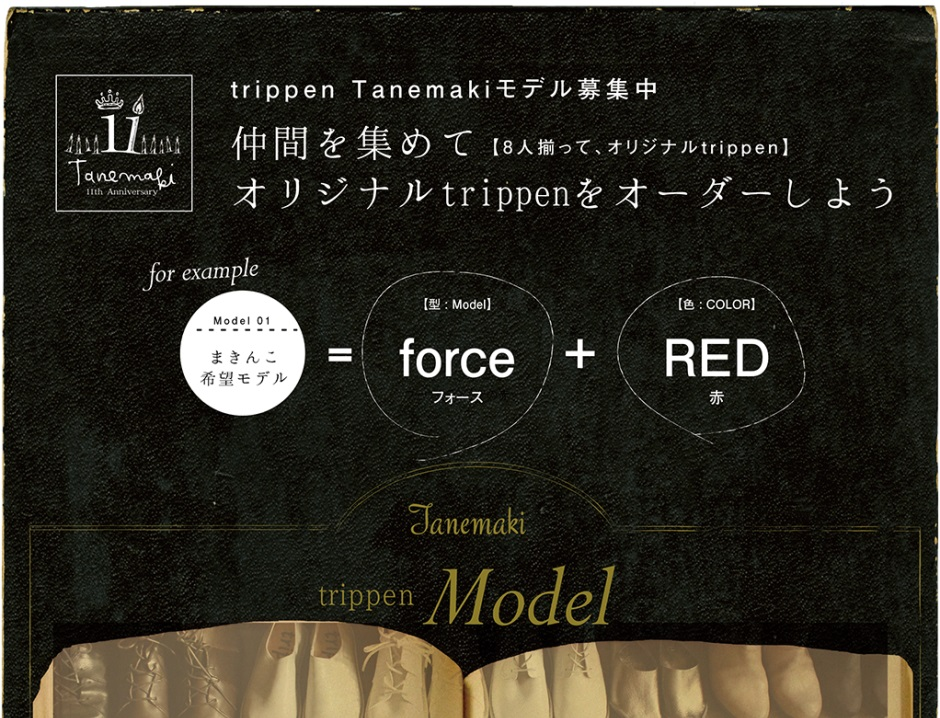 2016_trippen-1.jpg