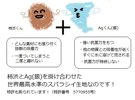 20200606kakishibukun.jpg
