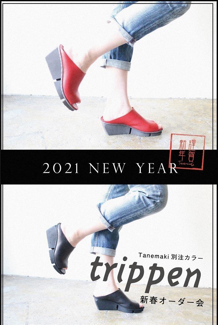 202101098777222.jpg