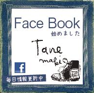 フェイスブックバナー