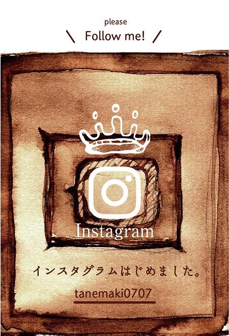 Tanemaki_insta_start.jpg