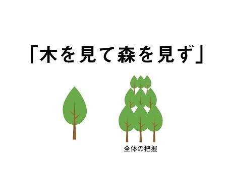 kimori1.jpg