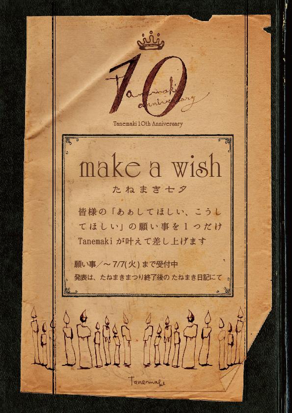 make_a_wish_net.jpg