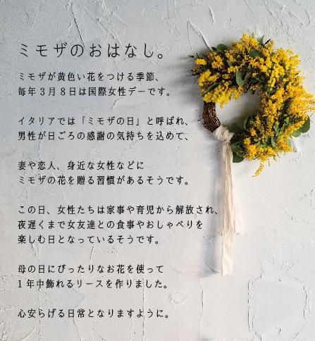 mimoza_banner.jpg
