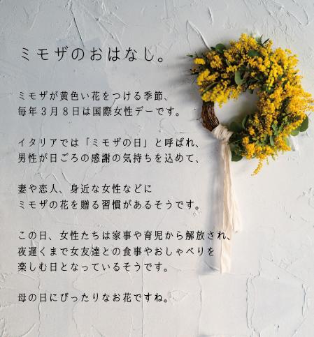 mimoza_banner450px.jpg