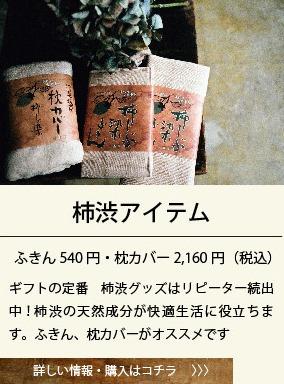 neturiba_gift_03-19.jpg