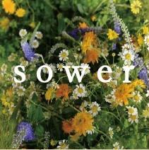 sower4156.jpg