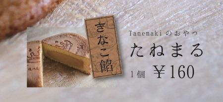 tanemaru_Poster2-2.jpg